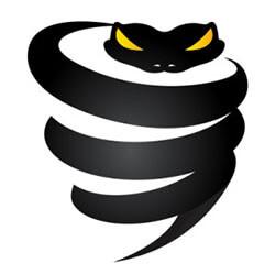 Logo VyprVPN