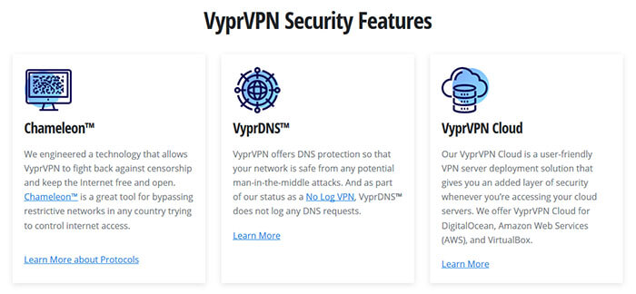 Security VyprVPN