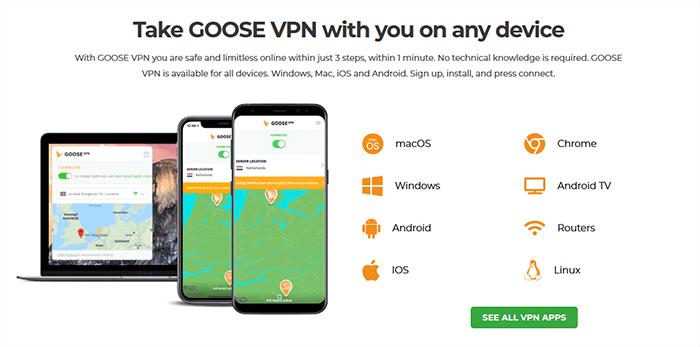 Goose VPN app