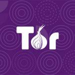 Tor or VPN