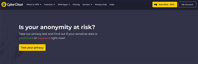 CyberGhost privacy tool
